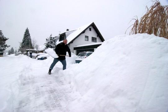 Heizkissen gegen den Winterblues: Paula Morelenbaum – Telecoteco